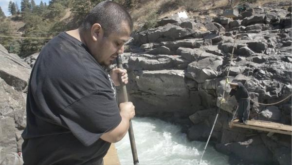 <p>James Kiona Jr. uses a dip net to fish for salmon on one of the scaffolds at Lyle Falls.</p>