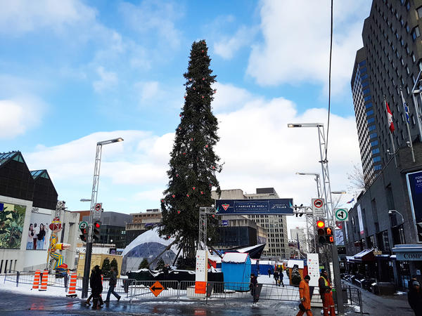 Montreal's extra-tall Christmas tree was selected to outdo the Rockefeller Center Christmas Tree. But local residents are ... underwhelmed.