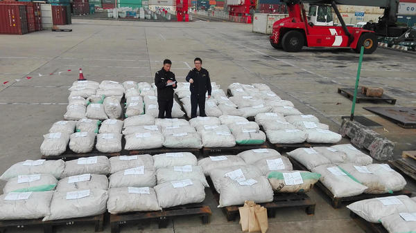 An undated photo, released Wednesday, shows Shanghai customs officers checking pangolin scales at a port in Shanghai. Chinese customs seized over three tonnes of pangolin scales, state media said, in the country's biggest-ever smuggling case involving the animal parts.