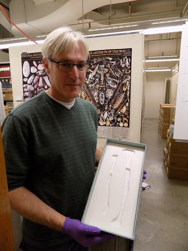 Kennewick Man's bones are kept in specially made archival boxes and stored in a series of cabinets at the Burke Museum in Seattle.