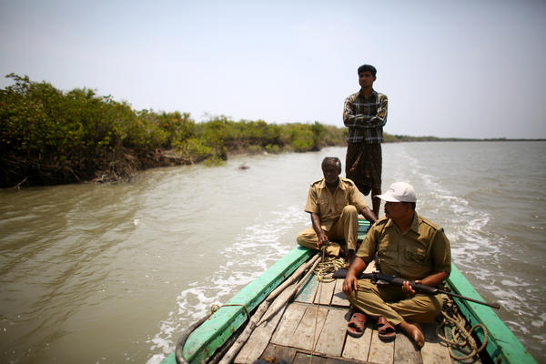 Debnath Mondal (front right), who survived a tiger attack in 2010, patrols the banks of the Sundarbans tiger preserve with another forest guard and a boat skipper.