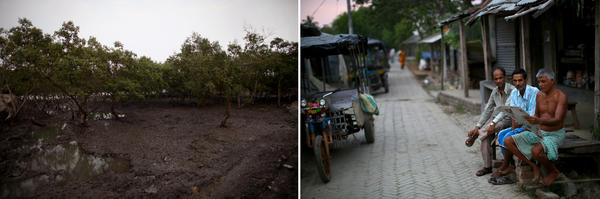 Neighboring villages of Rajat Jubilee (right) and Tipligheri Sadhupur (left) have both benefited from solar-powered electricity. Below, women stand on the bank separating mangrove trees from the water in Tipligheri Sadhupur.