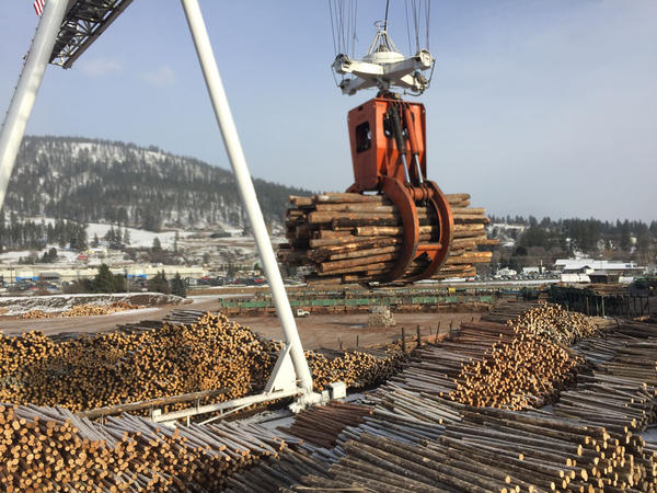 A giant port crane moves tree-sized timber at one of two mills owned by Vaagen Brothers Lumber Inc. in Pend Oreille County, Washington.