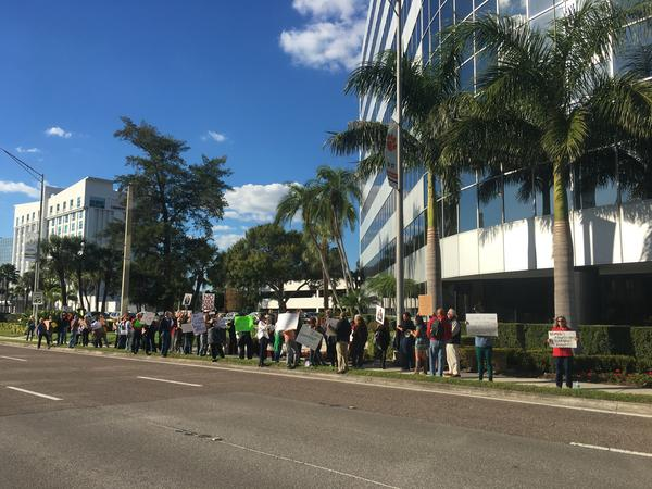 About 90 people showed up to Sen. Marco Rubio's office in Tampa to protest President-Elect Donald Trump's cabinet picks.
