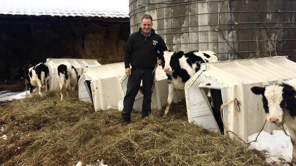 David Fuller has been a dairy farmer since 1977. He gets about the same amount of money for milk these days he did when he started.