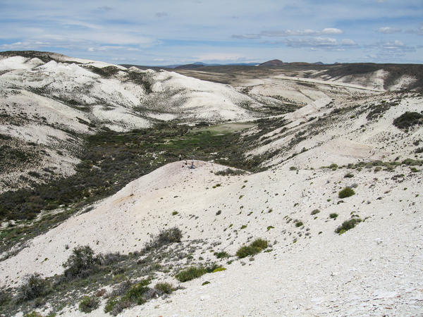 The Laguna del Hunco fossil site in Chubut, Patagonian Argentina. Workers here are collecting abundant and diverse plant fossils.