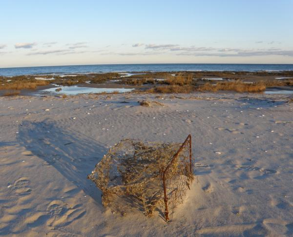 A ghost pot sits in the sand on Virginia's Eastern Shore.