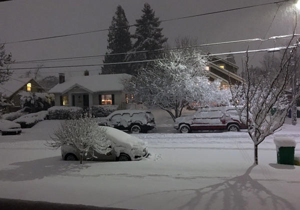 Oregon Gov. Kate Brown has declared a state of emergency for all of Oregon as communities around the state struggle with heavy snow and potential flooding.