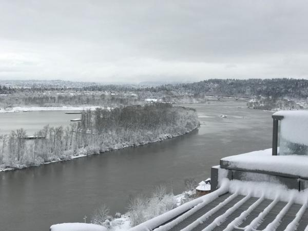 <p>Snow surrounds the Willamette in Portland. </p>