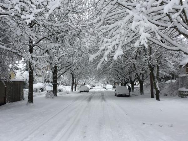 <p>A street in the Sellwood-Moreland neighborhood of Portland.</p>