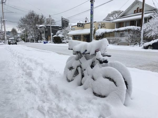 <p>Bikes locked up under inches of packed snow in Portland.</p>