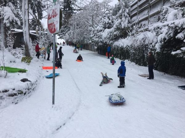 <p>Stuart Drive is a popular sledding spot on Alameda Ridge in Portland.</p>