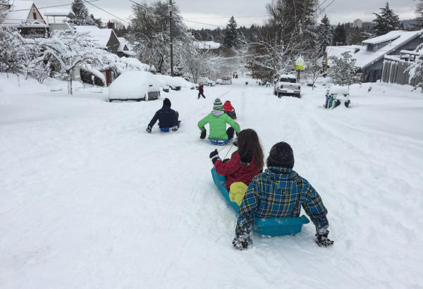 <p>Children take to the hills of Sabin during another snow day for Portland Public Schools, Jan. 11, 2017.</p>
