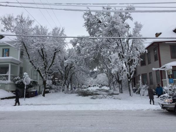 <p>A scene from a snowed in Northwest Portland</p>