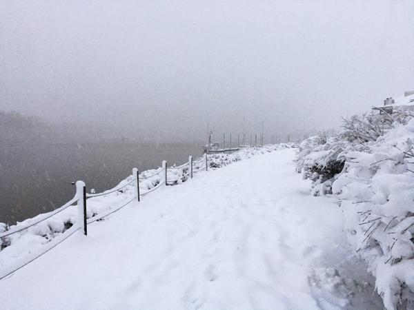 <p>Snow continues to pileup on a trail along the Willamette River.</p>