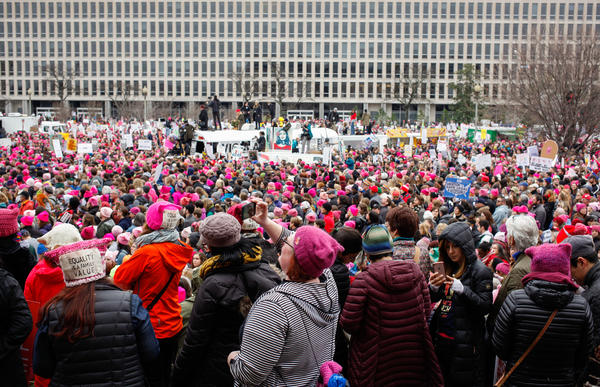 Maryland Avenue was awash with pink between the Smithsonian's Air and Space Museum and the U.S. Department of Education at the Women's March on Washington.
