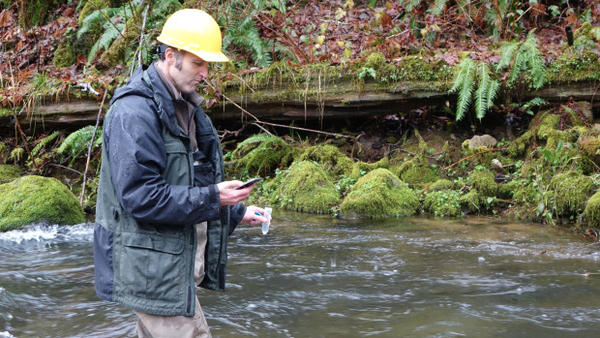 <p>ODFW biologist Shaun Clements counts down the seconds before emptying a vial of synthetic DNA into a stream near Alsea, Oregon.</p>