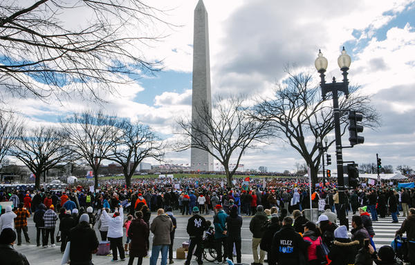 Crowds gathered along the National Mall for the 44th annual March for Life.