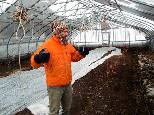 Inside the wamth of his mobile greenhouse near Glacier National Park, Karl Sutton's spinach plants thrive despite the lingering winter chill.
