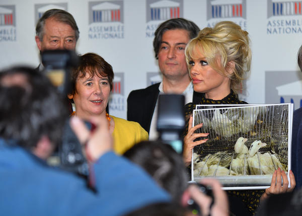 Former<em> Baywatch</em> star Pamela Anderson (right) holds a news conference in Paris on Tuesday against the production of foie gras.