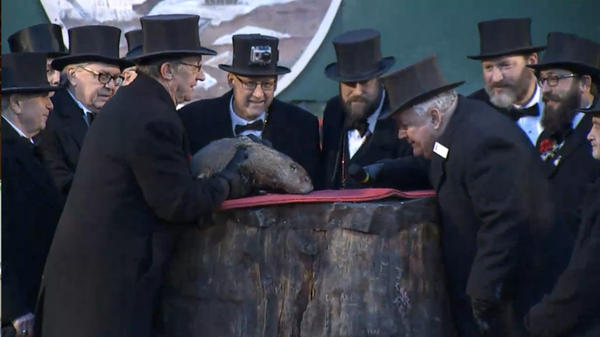 A screengrab of a video by the tourism website of the state of Pennsylvania shows the groundhog Punxsutawney Phil being watched for signs of his shadow.