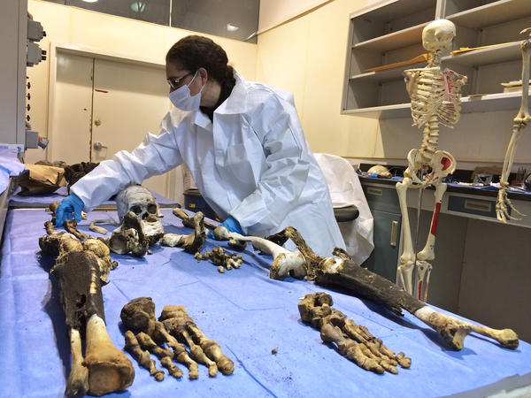 A technician examines human remains at a morgue in Chihuahua city, Mexico.