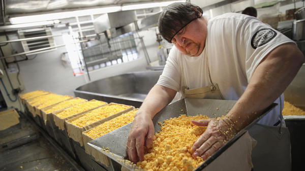 Lenny Zimmel puts Colby cheese curds into forms to make 40-pound blocks of cheese at Widmer's Cheese Cellars in Theresa, Wis. Record dairy production in the U.S. has produced a record surplus of cheese, causing prices to drop.