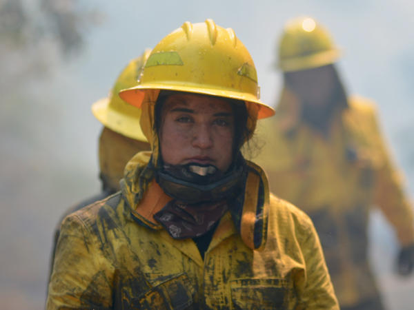 A firefighter working near Concepcion, Chile, where an aircraft assisted teams on the ground working to put out a wildfire.