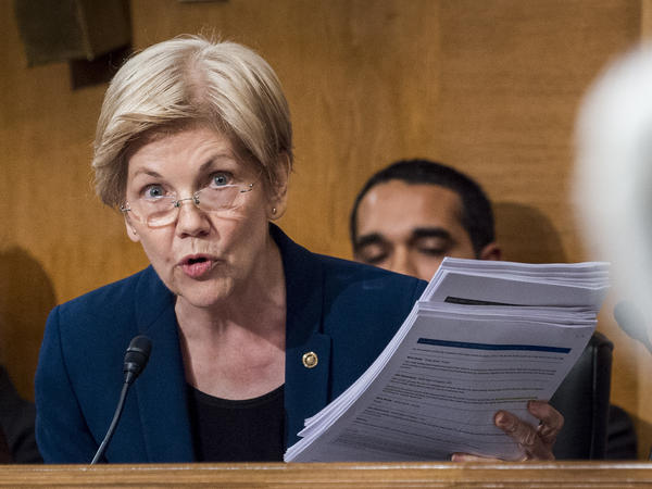 Sen. Elizabeth Warren, D-Mass., in a Senate committee hearing last year.