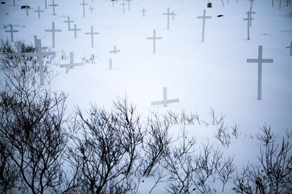 Grave markers and barren shrubs buried by snow in a Nuuk cemetery.