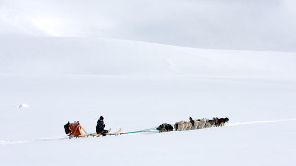 A sled dog team travels over a glacier outside Tiniteqilaaq.