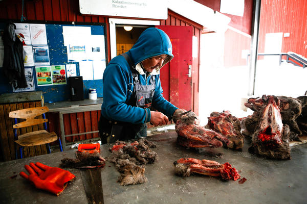 Butcher Joel Jorgensen skins reindeer heads at a roadside market in Nuuk.