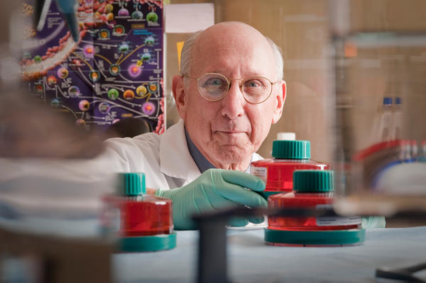 Earlier this week, NIH temporarily halted work in the cell therapy lab of Dr. Steven Rosenberg, chief of surgery at the National Cancer Institute, pending a review of safety standards there.