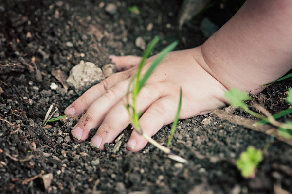 Children can encounter lead in contaminated soil, paint, water and dust.