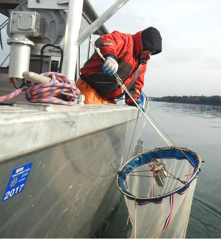 <p>Emiliano Perez with the Nisqually Tribe brings up a plankton net from 400 feet beneath Puget Sound.</p>