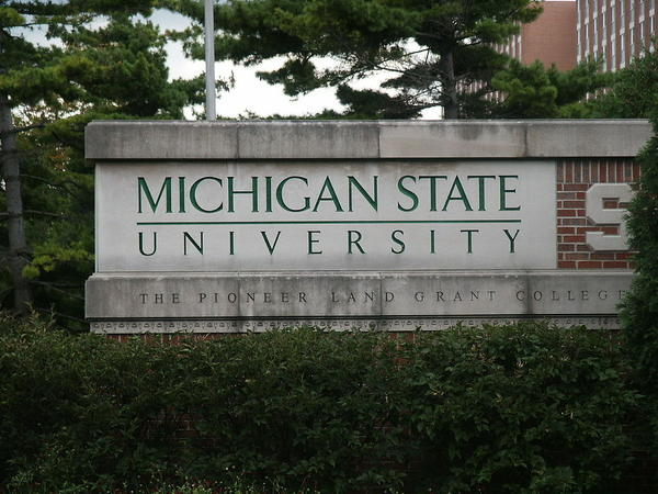 Faculty and staff at MSU say they will work to protect undocumented students from Immigrations and Customs Enforcement officers.