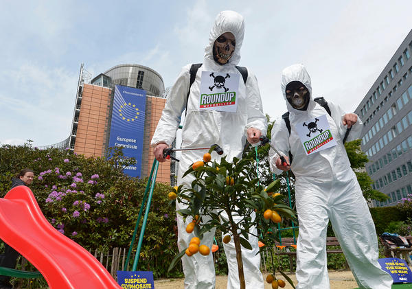Last May, members of the Avaaz civic organization dressed as crop-sprayers in Brussels to protest the European Commission's plans to re-license glyphosate, the popular weed-killer sold by Monsanto under the brand name Roundup.