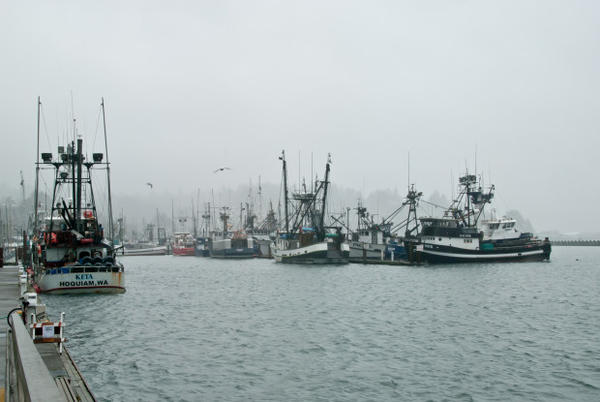 <p>The Trump administration is considering defunding Oregon Sea Grant, which has a large presence in Newport.</p>