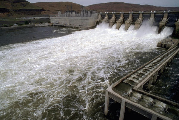 Lower Monumental Lock and Dam on the Snake River. A tribal group has highlighted the impact of four federal dams on salmon runs in the lower Snake River.