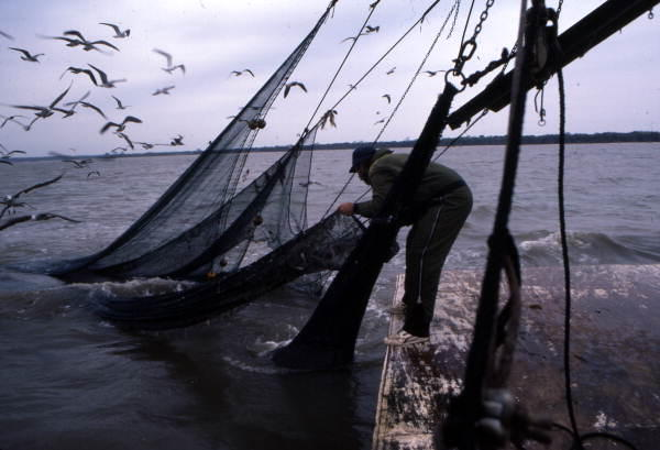 "A fisherman attaches a ""lazy line"" to the tail bag."