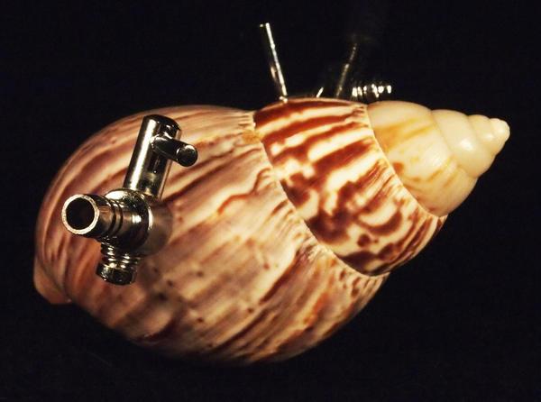 "Jonathon Keats' piece ""Breathing Apparatus for Mollusks."" (Courtesy)"