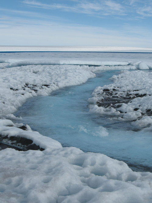 At the peak of the summer, meltwater runoff forms streams and lakes on the ice surface in this 2007 photo.