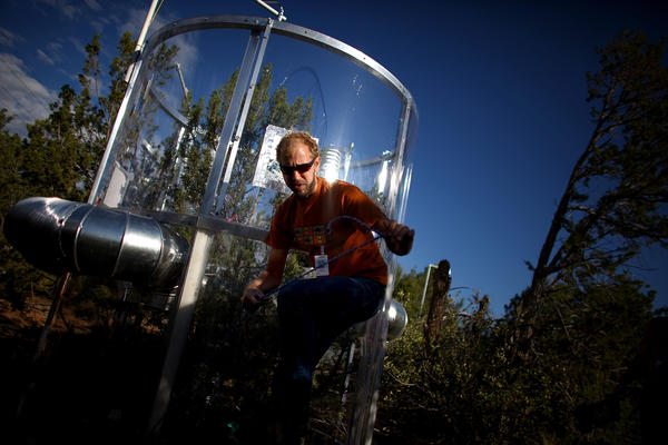 """Heath Powers climbs through a maze of wiring at the """"tree torture"""" lab at Los Alamos National Laboratory in New Mexico. Powers is a project manager at the lab."""