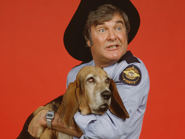 "James Best played Sheriff Rosco P. Coltrane, the bumbling minion of Jefferson Davis ""Boss"" Hogg, a corrupt county commissioner and the show's Big Bad. Rosco's dog Flash was played by a basset hound named Sandy."
