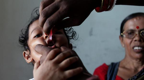 Two drops of life: An Indian girl gets vaccinated for polio at a home in Calcutta.