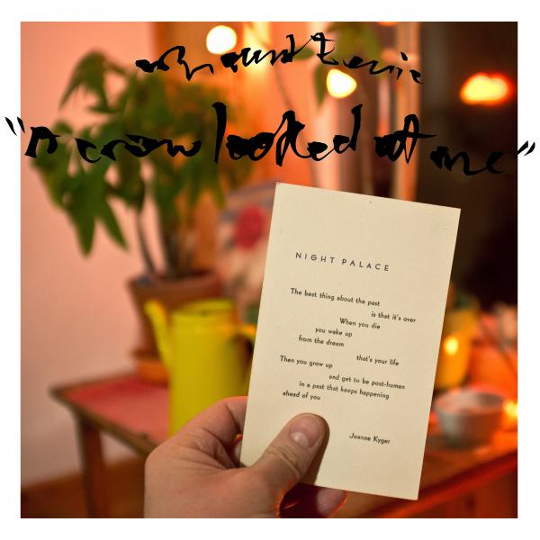 Mount Eerie: <em>A Crow Looked At Me</em>
