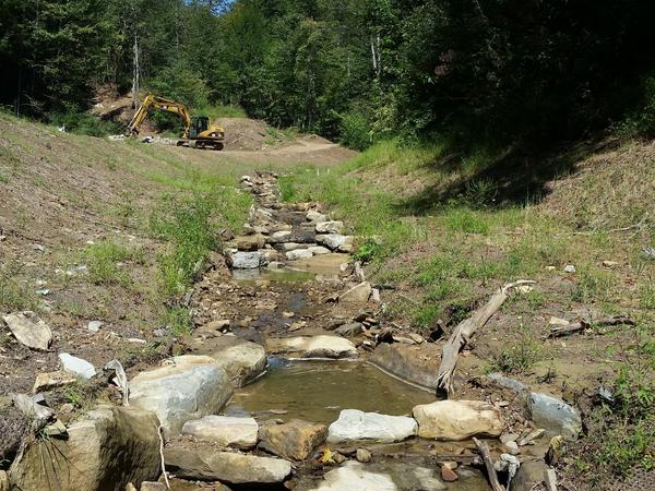 In coal country, restoring streams like this one near Logan, W.Va., is a big business. But the practice remains controversial among some scientists.