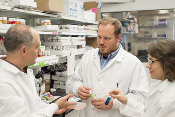 WSU College of Medicine's Jason Gerstner, center, discusses assays for measuring protein levels from fly brains with Dr. Kit Hayworth, left, and Clinical Laboratory Specialist Becky Taylor.