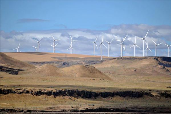 <p>The Shepherds Flat Wind Farm in Oregon.</p>