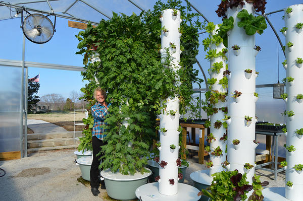 """Mona Hitch tends to one of her 8-foot vertical farming towers. She says she and her husband eat salads grown """"vertically"""" in their greenhouse every day."""